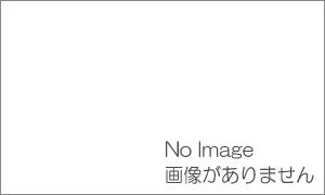 仙台市街ガイドのお薦め HONA仙台 ~鉄板・お好み焼きダイニング~